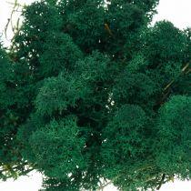 Muschio di renna verde Deko-Mos conserva muschio per artigianato 400g
