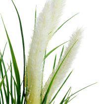 Coda di volpe verde erba, bianco 63 cm