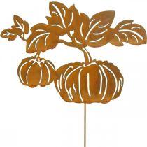 Spina da giardino zucca ruggine decorazione giardino autunno metallo 57cm