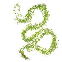 Ghirlanda di piante con bacche verdi L122cm