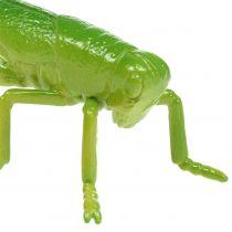 Cavalletta verde 11cm 1p