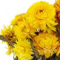 Paglia fiore giallo essiccato fiori secchi decorazione mazzo 75g