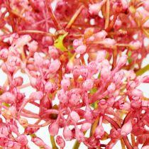 Ramo di fiori di sambuco rosa 54,5 cm 4 pezzi