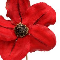 Holzblüte als Stecker Red Ø9cm - 12cm L45cm 15pcs