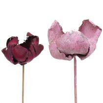 Fiore in legno, tazza di palma mix rosa-erica 25pz