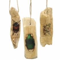Insetto decorativo da appendere in legno 9-13 cm 36 p