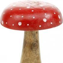 Fungo decorativo in legno di agarico autunnale Ø12cm H19cm