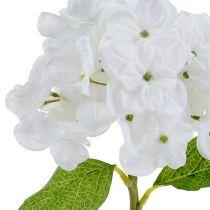 Ortensia 35 cm bianca