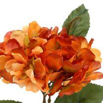 Ortensia arancione 30 cm 3 pezzi