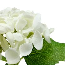 Ortensia 33cm Bianco 1pz