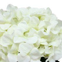 Ortensia Maxi Bianco Ø30cm L113cm