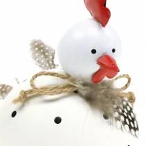 Figura per decorazioni Pollo bianco a pois e con piume A13cm
