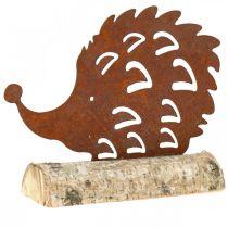 Patina di riccio su base in legno 26cm x 18cm