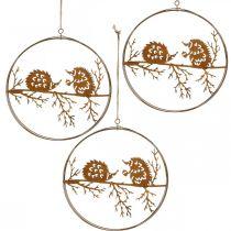 Ciondolo in metallo, riccio su ramo, decorazione autunnale, anello decorativo, cornice in acciaio inossidabile Ø15,5 cm 3 pezzi