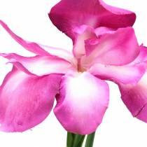 Iris artificiale Rosa 78 cm