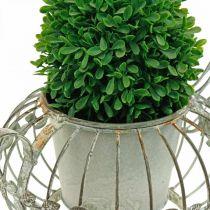 Fioriera, caffettiera decorativa, vaso in metallo per piantare L15.5cm Ø11.8cm