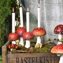 Portacandele Toadstool rosso, bianco Per 4 candele a bastoncino 28,5 × 17 × 16 cm