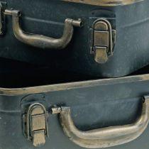 Valigetta in metallo, fioriera, valigetta per piantare L30 / 22,5 cm, set di 2