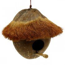 Cocco come nido, voliera da appendere, decorazione cocco Ø16cm L46cm