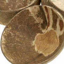 Ciotola decorazione cocco lucidata naturale 6pz