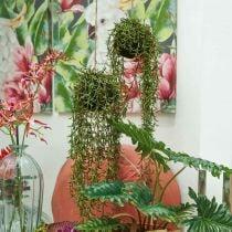 Appendiabiti artificiale Rhipsalis di cactus di corallo 90 cm