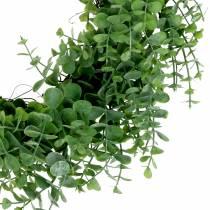 Ghirlanda verde eucalipto Ø36cm