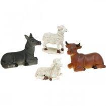 Presepe presepe animali con 4 personaggi