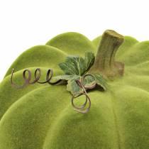 Zucca decorativa floccata verde muschio 32cm