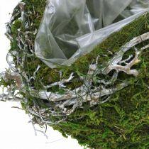 Decorazione funeraria palla rampicante verde muschio, lavato bianco Ø20cm