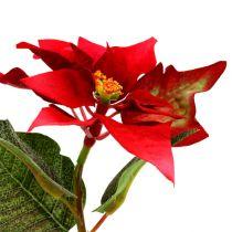 Stella di Natale fiori artificiali rossa L73cm