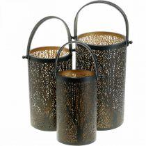 Lanterna in metallo, lanterna con albero, decorazione autunnale, nera, dorata Ø20 / 19 / 14cm H23,5/17 / 12,5cm