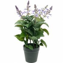 Lavanda artificiale in vaso, vaso lavanda, pianta artificiale mediterranea