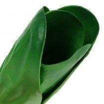 Bietola decorativa vegetale 25,5 cm