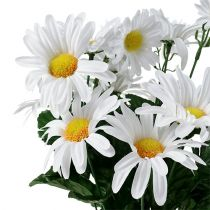 Bouquet di margherite bianco 45cm