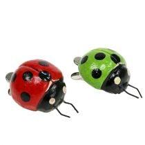 Coccinella con clip 4,5 cm rosso, verde 6 pezzi