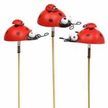 Spina decorativa coccinella su stecca legno rosso, nero 4 cm x 2,5 cm H23,5 cm 16 pezzi