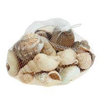 Miscela di conchiglie per decorazione marittima naturale 400g