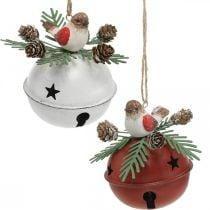 Campane con pettirossi, decorazioni per uccelli, inverno, campane decorative per Natale bianco / rosso Ø9cm H10cm set di 2