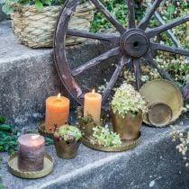 Piatto in metallo per decorare, decorazioni da tavola, portacandele rotondo aspetto antico dorato Ø7.5 / 10/12/15 / 18cm H2cm set di 5