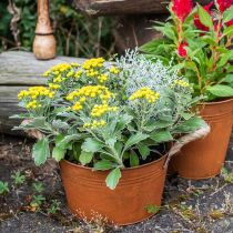 Vaso in metallo con manici in corda, vaso per fioriera, autunno, patina Ø22cm H12cm