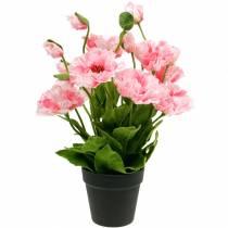 Papavero orientale, fiore artificiale, papavero in vaso rosa