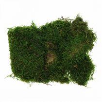 Muschio decorativo per artigianato verde, verde scuro 100g