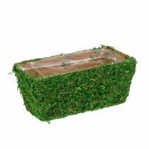 Fioriera verde muschio 20 × 10 cm H9 cm