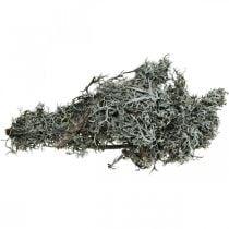 Ramoscelli decorativi Ramoscelli di lichene Ramoscelli di muschio Lichene decorazione naturale 750g