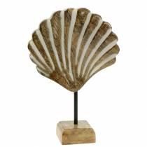 Scocca con base in legno bianco, decorazione marittima naturale 20 × 14 cm per il soggiorno