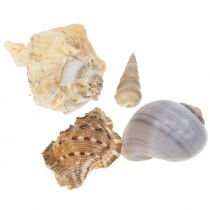 Shell mix naturale 500g