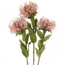 Puntaspilli fiore autunnale artificiale Protea Rosa Leucospermum 73cm 3 pezzi
