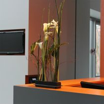 OASIS® Black Table Deco Medi schiuma floreale 4 pezzi