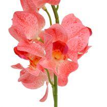 Orchidea Mokara Salmone 50cm 6 pezzi