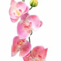 Orchidea Phalaenopsis Rosa Artificiale 60cm